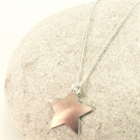 Picture of Copper Rose Petite Star Necklace