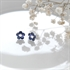Picture of Forget Me Not Blue Daisy Studs